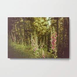 A New Day II Wildflowers at Dawn - Nature Photography Metal Print