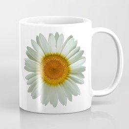 Summer White Daisy Coffee Mug