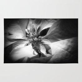 Pale Yellow Poinsettia 1 Dark Rug