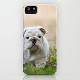 Walking Wrinkles iPhone Case