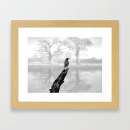Crow On Misty Pond A114 Framed Art Print