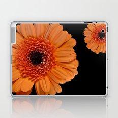 Two orange Laptop & iPad Skin