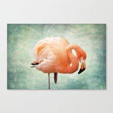 Miami Bound Canvas Print