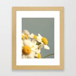 007 Flower Framed Art Print