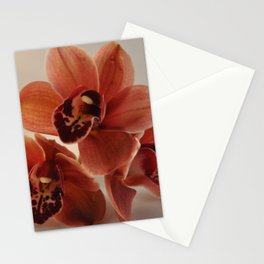 A Peach Orchid Pyramid Stationery Cards