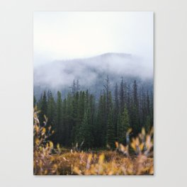 State Forest Canvas Print