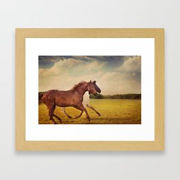 Sissy And Indie With Clouds Framed Art Print