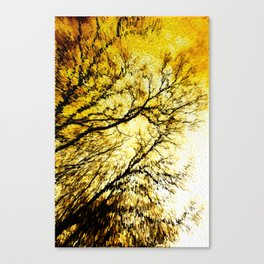 Morning Tree Tops Canvas Print