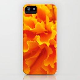 Frills iPhone Case