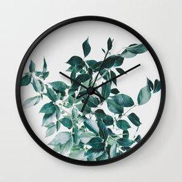 Botanic Wall Clock