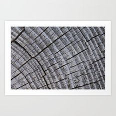 Touch Wood Art Print