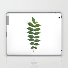 Green Leaf Botanical Print Laptop & iPad Skin