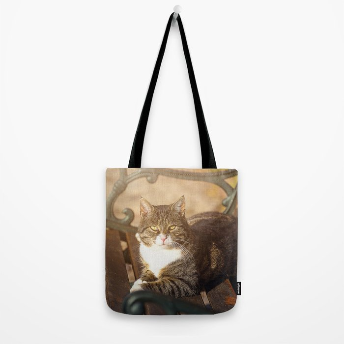 Cute cat relaxing in the sun on old bench Tote Bag