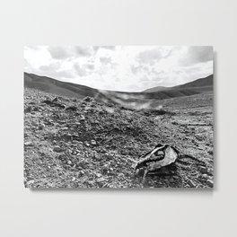 Boneyard B&W Metal Print