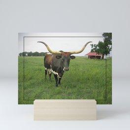 Texas Longhorn Mini Art Print