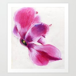 Winged Art Print