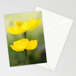 Iceland Poppies Stationery Cards