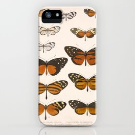 Vintage Scientific Anatomical Insect Butterfly Illustration Vintage Hand Drawn Art iPhone Case