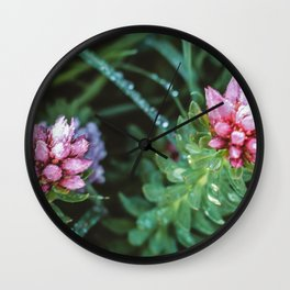 Dos Floras Wall Clock