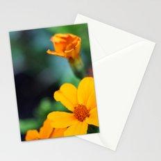 orange & turquoise Stationery Cards