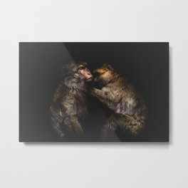 Monkeys Grooming Metal Print