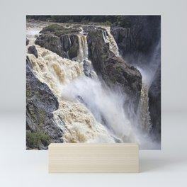Enjoy the waterfall Mini Art Print