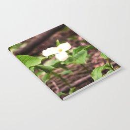 Understory Ephemerals - Red Trillium and White Trillium Notebook