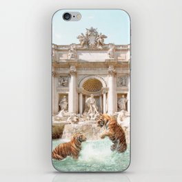 Fontana Di Trevi iPhone Skin