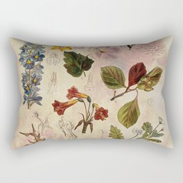 Botanical Study #1, Vintage Botanical Illustration Collage Rectangular Pillow