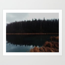 Reflections on Wolverine Lake Art Print