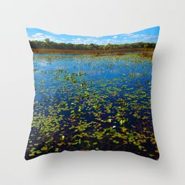Point Pelee National Park Wetlands, ON Canada Throw Pillow