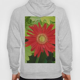 Stunning Red Flower Hoody