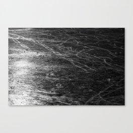 Icy Days NO5 Canvas Print