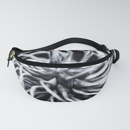 Whirl Fanny Pack