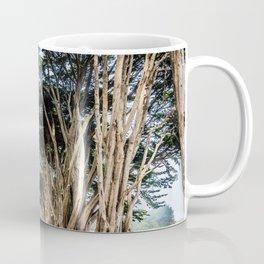 cyprss tunnel Coffee Mug