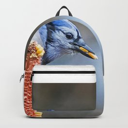 Perfect Straddle Backpack