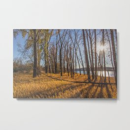 Downstream Campground, North Dakota 19 Metal Print