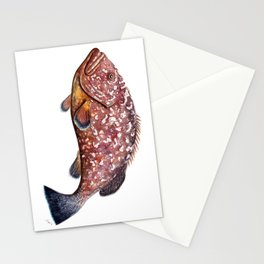 Dusky grouper or merou Stationery Cards