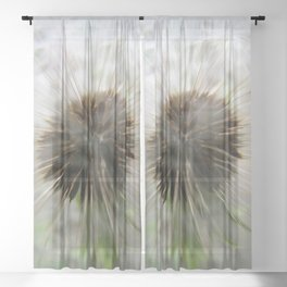 The Seed Maker Sheer Curtain