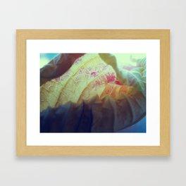 Untitled VII Framed Art Print