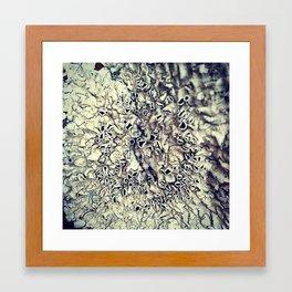 Fungus Among Us Framed Art Print