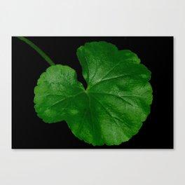 Geranium Leaf Portrait Canvas Print