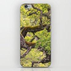 Gnarled iPhone & iPod Skin