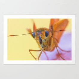Golden Moth Art Print