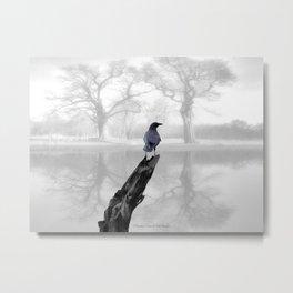 Crow On Misty Pond A114 Metal Print