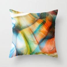 Colo(u)r Throw Pillow