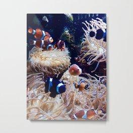 """""""Look! It's Nemo!"""" Metal Print"""