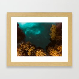 Into the lake Framed Art Print