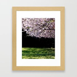 Where the cherries bloom by Laila Cichos Framed Art Print