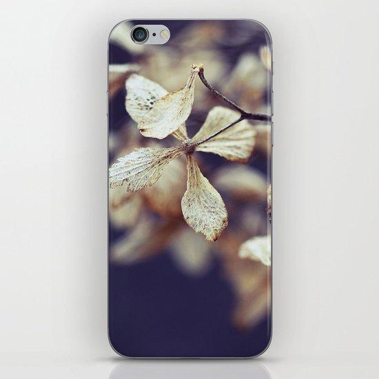 Nostalgic Nature iPhone & iPod Skin